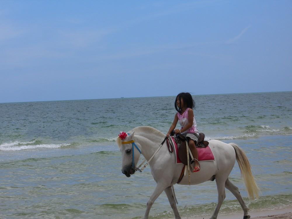 La petite fille et le cheval