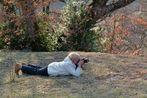 *la photographe*