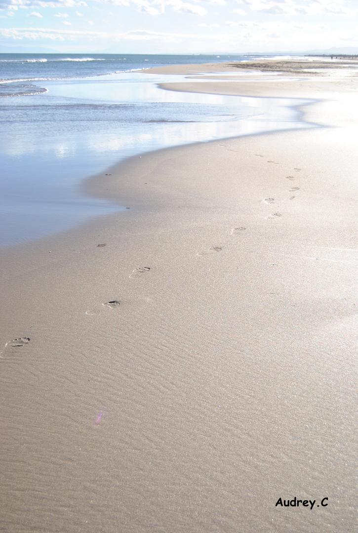 La plage en hivers