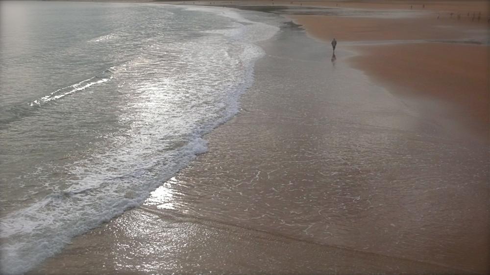 La Playa ( Sardinero)