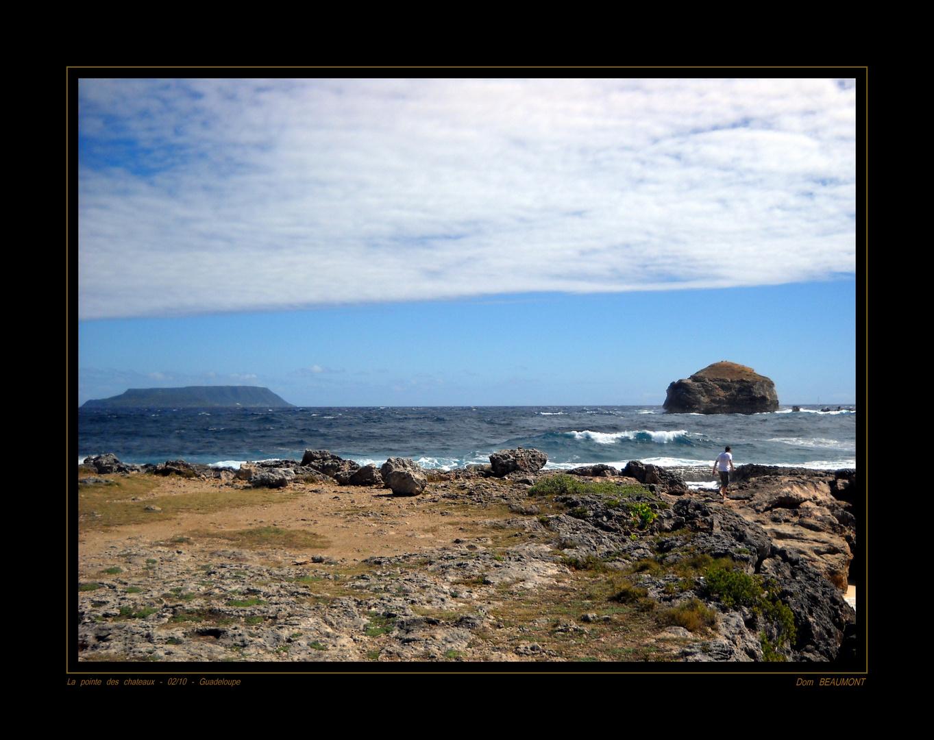 La pointe des chateaux - Février 2010 - Guadeloupe