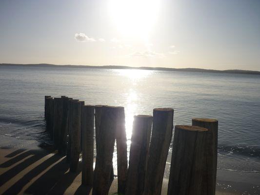 La possibilité d'une île, Oléron