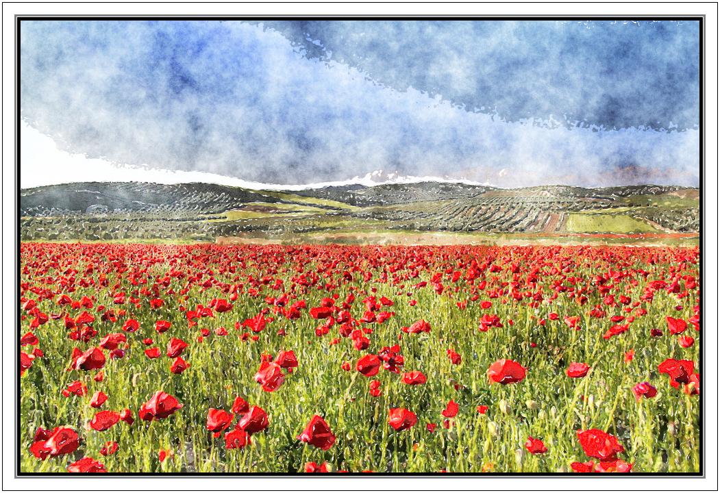 La Primavera al Rojo Vivo (foto de Lola Diaz Somodevilla) (efecto acuarela)