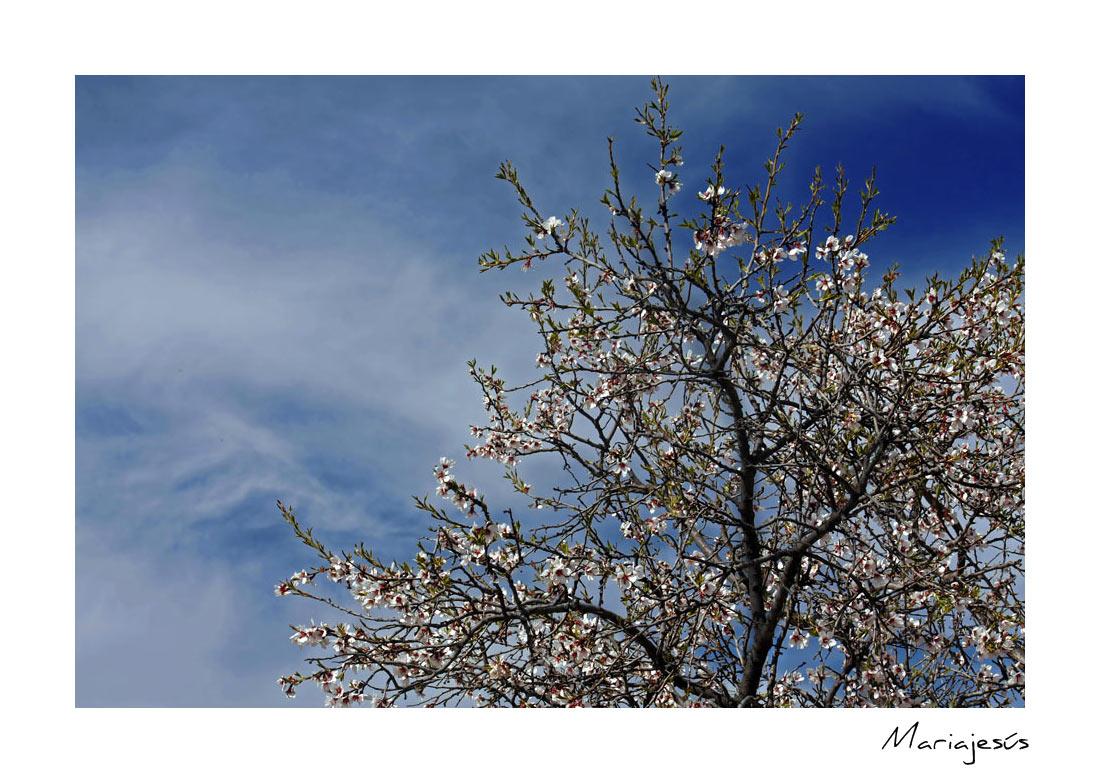 La primavera se acerca..