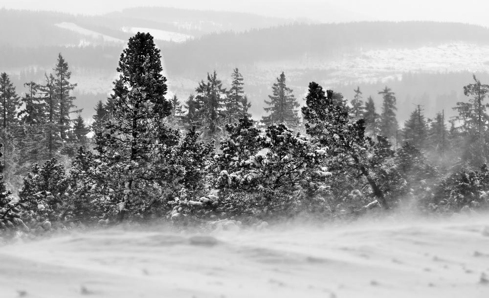 la puissance de l'hiver - die Macht des Winters