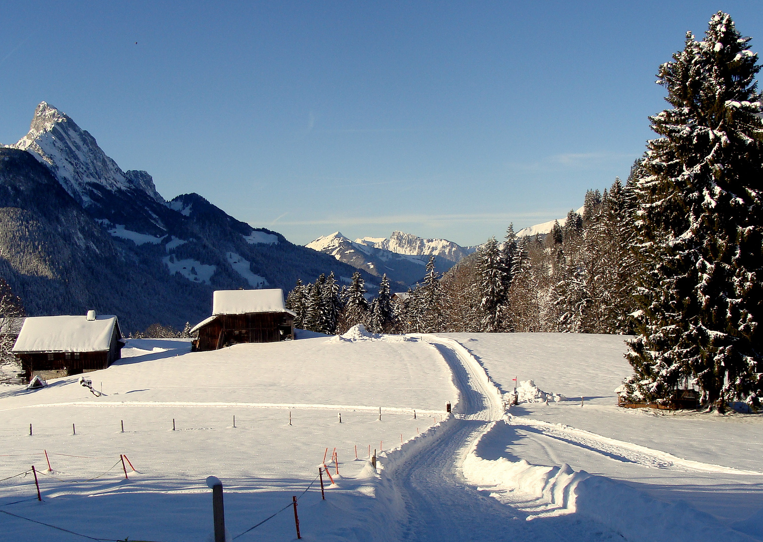 La région de Gstaad.01