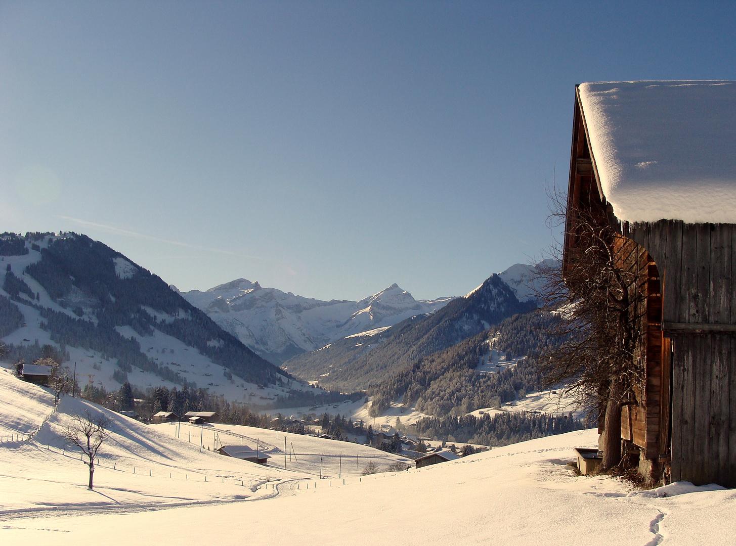 La région de Gstaad.02