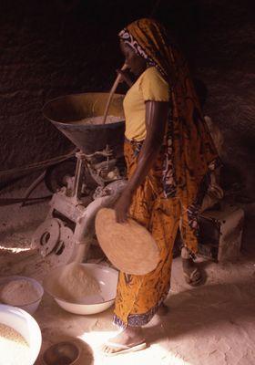 La région Sahélienne du Nord Cameroun 1984