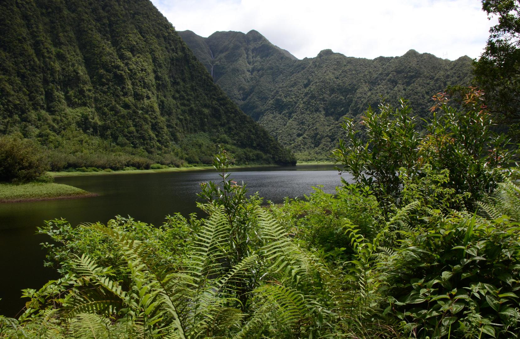 La Réunion - der Grand Etang