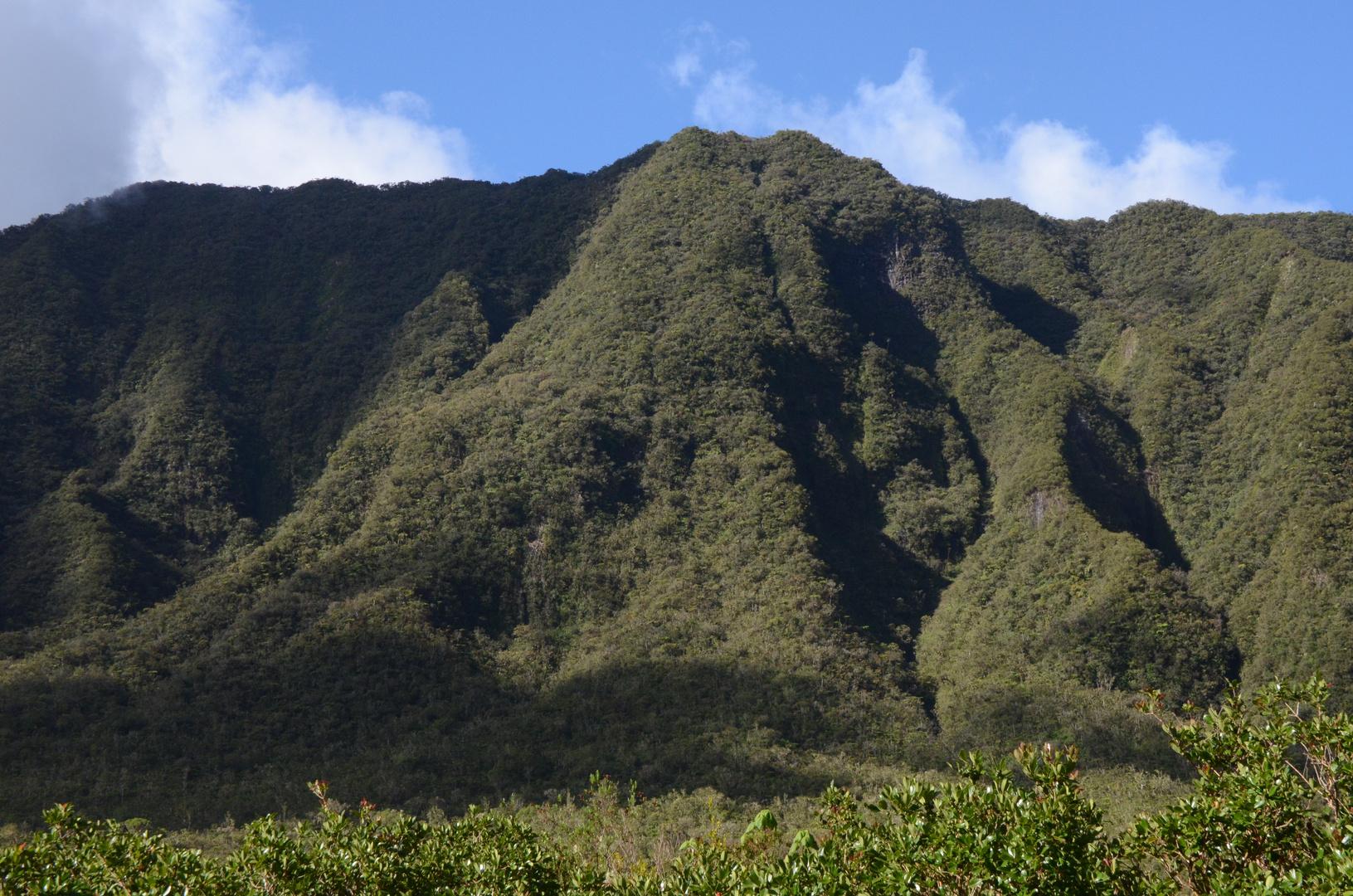 La Réunion - Faltenberge am Foret de Bébour