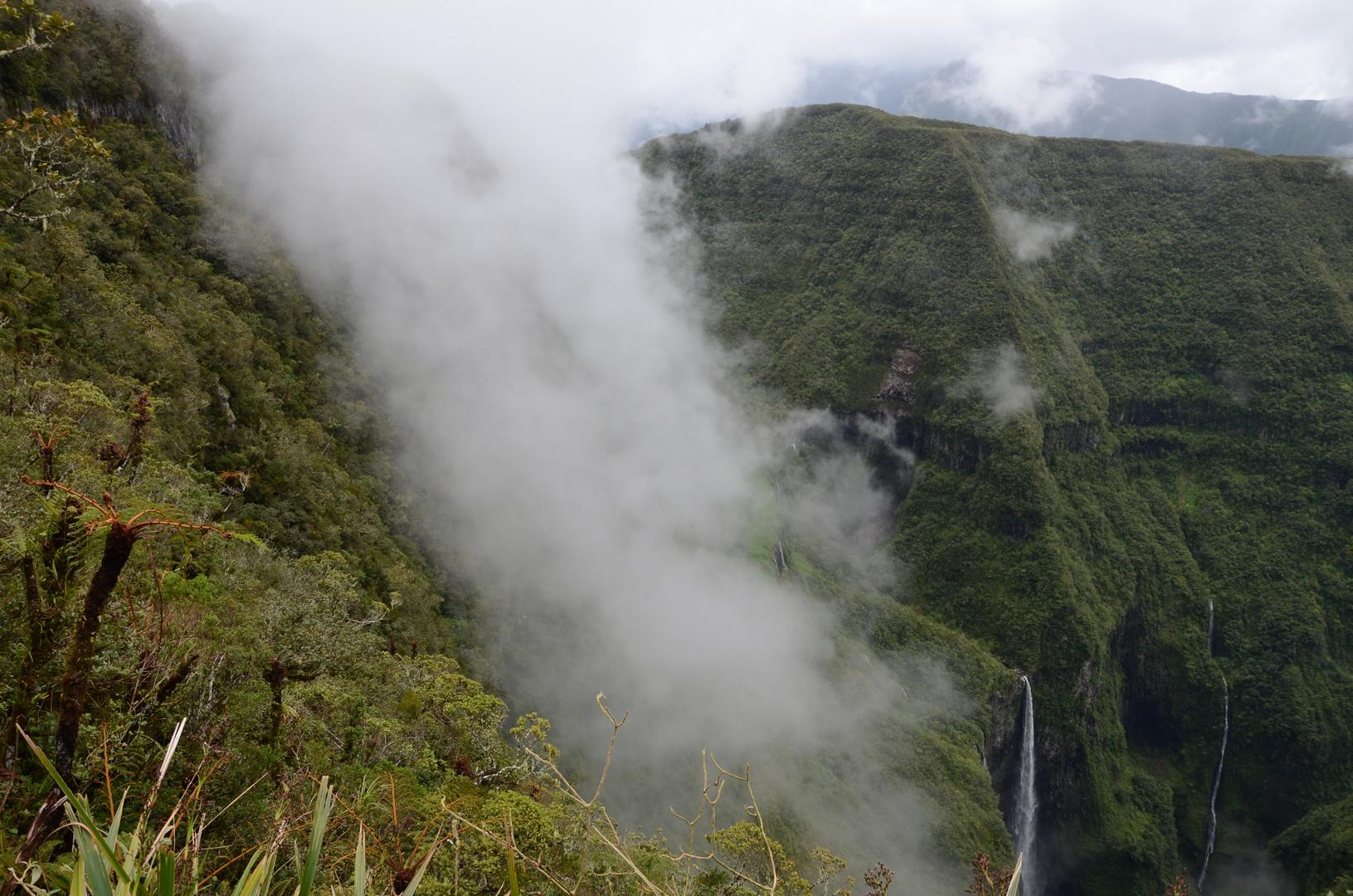 La Reunion : Nebelschwaden am Trou de Fer