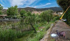 La rivière se promène en Corse