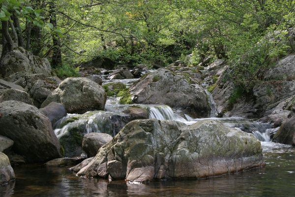 La rivière3