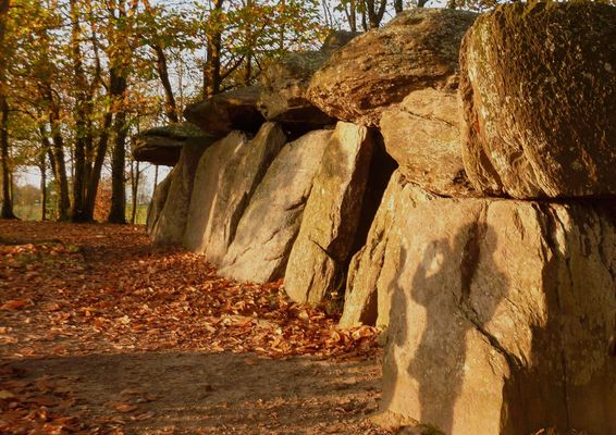 la roche aux féesa éssé 35