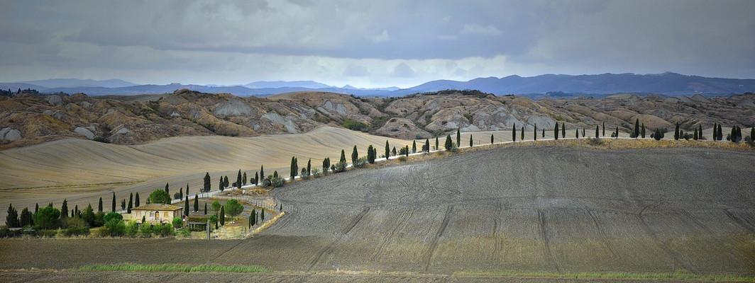La route des cyprès