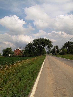 la route en été
