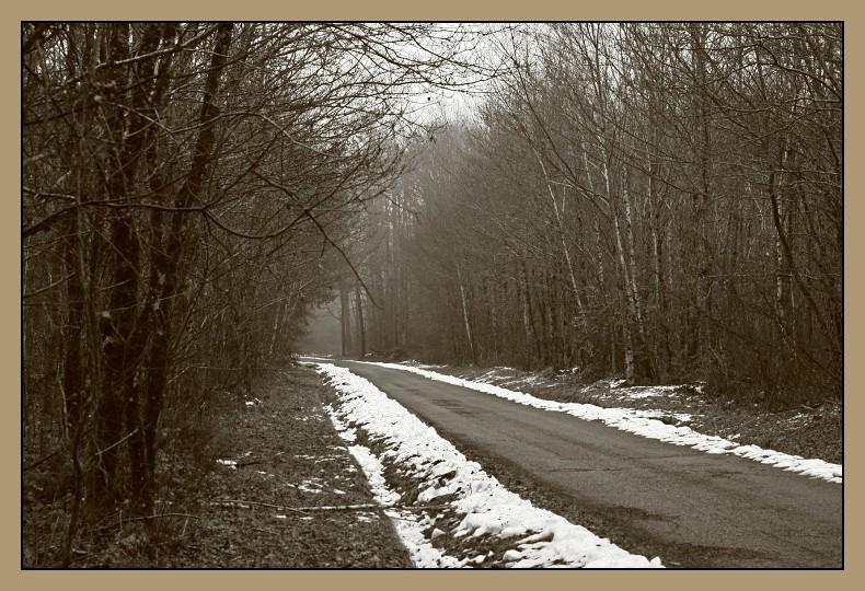 la route s'enfonce dans le brouillard et le froid