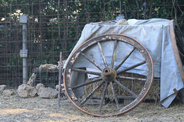 la ruota... della fortuna