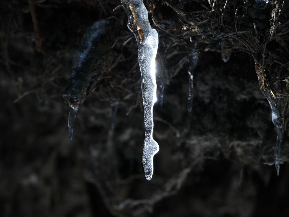 la scarpina di ghiaccio