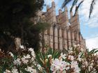 La Seu - die Kathedrale von Palma
