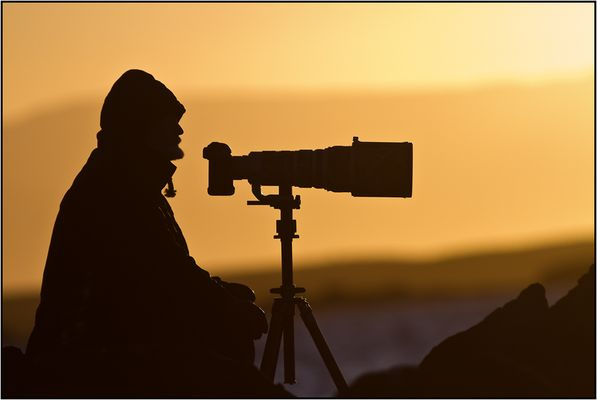 La solitude du photographe animalier