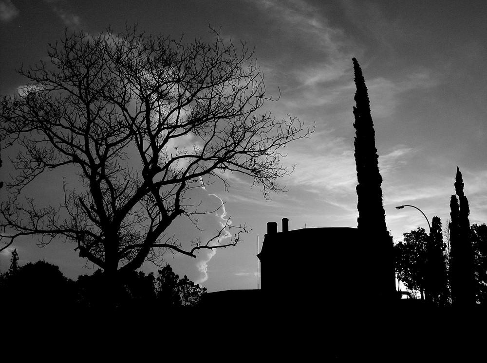 La sombra de Evita