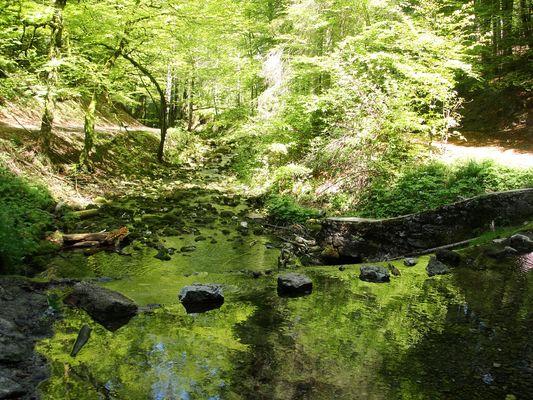 La Source Bleue (Doubs) : toutes les larmes de Berthe