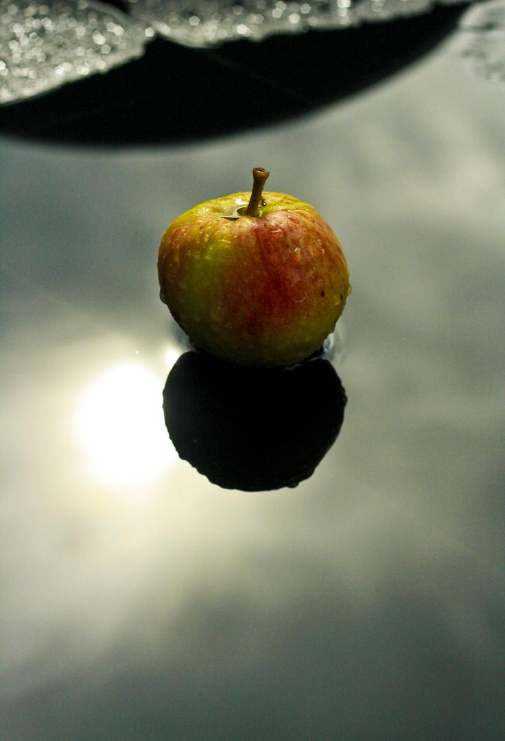 la table aux pommes