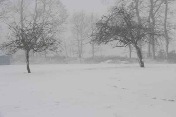 La tempête de neige fait rage, les talus tiennent bon