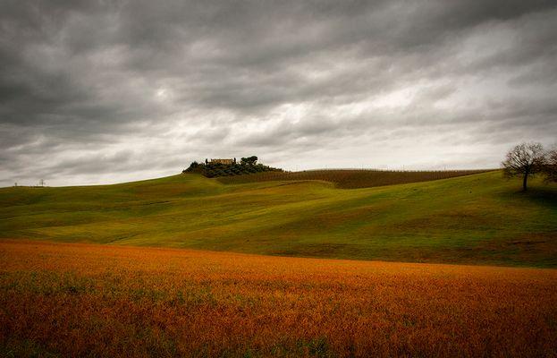 La terre de Siena....