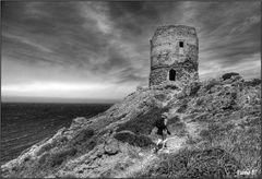 La torre (2)