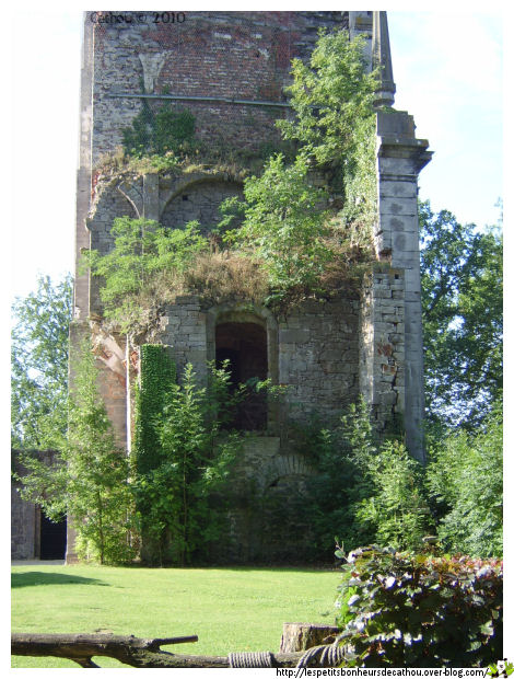 La tour aux rapaces