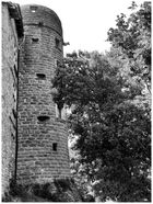 La tour prends garde !