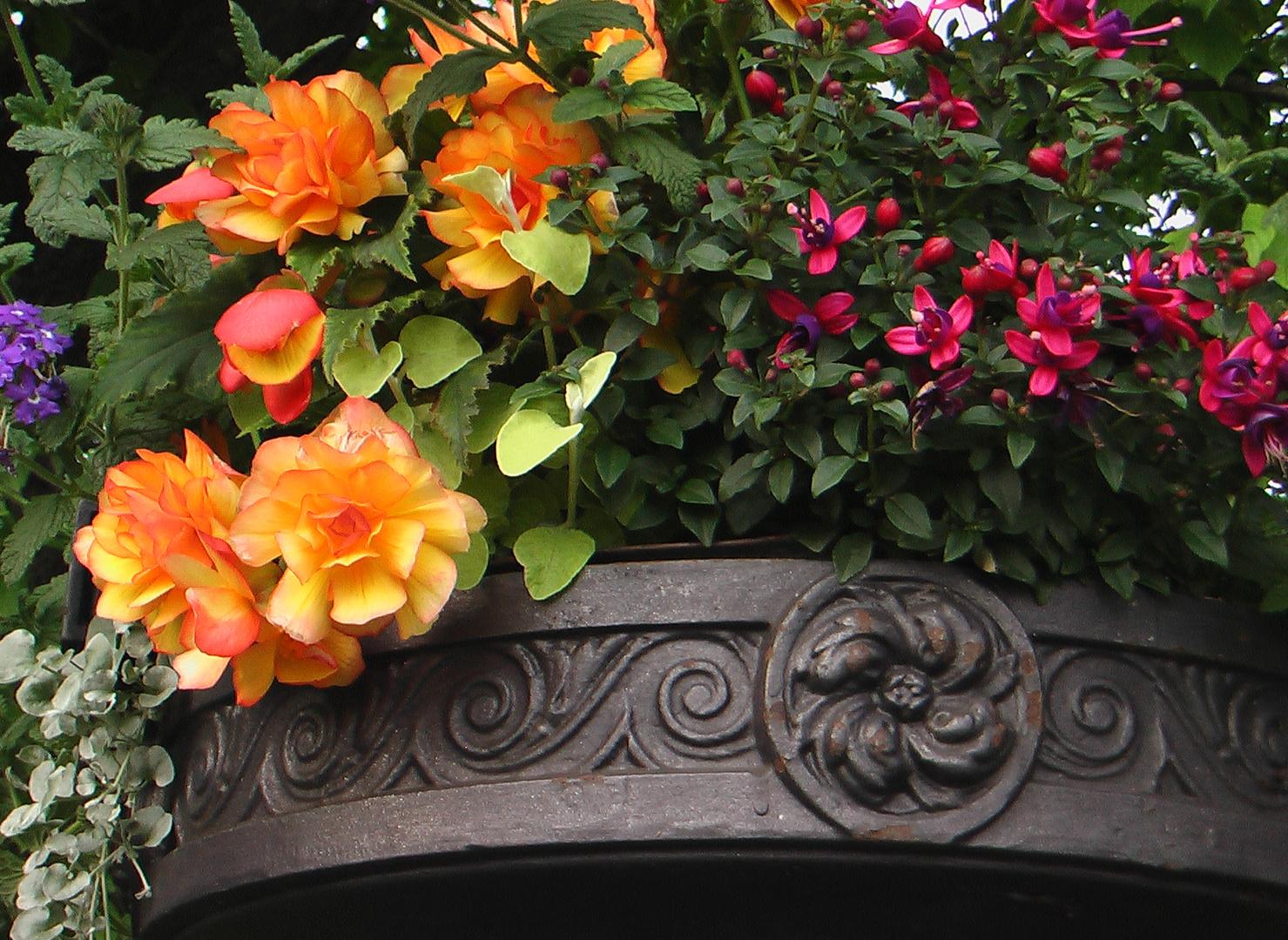 La vasque aux fleurs