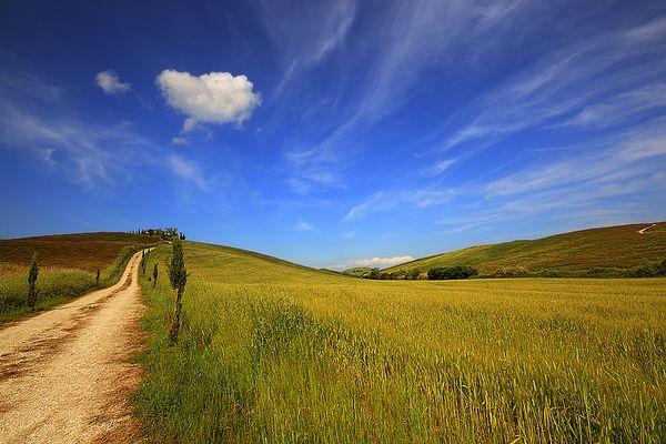 la via per il paradiso (The way to heaven)