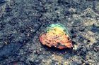 """"""" La vie, c'est comme une bulle, une petite bulle perdue dans l'atmosphère, et qui éclate un beau jo"""