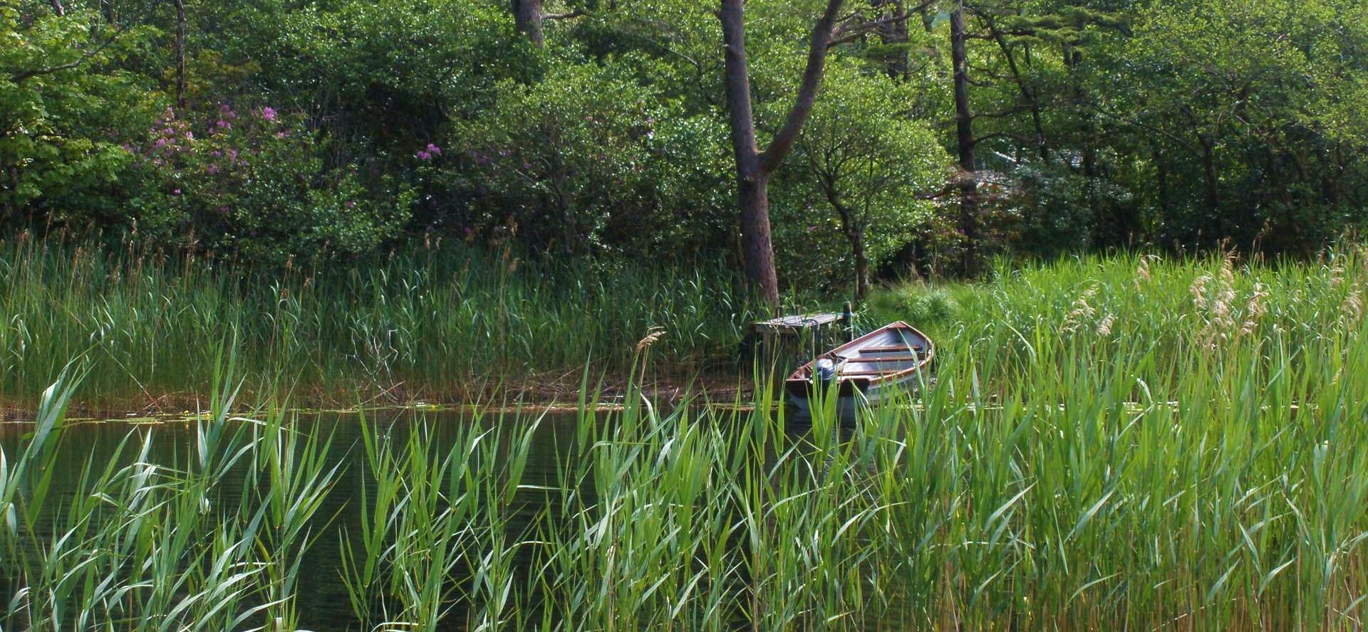 """"""" La vie est un long fleuve tranquille """" ... Ou pas."""