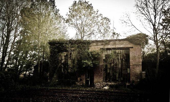 la vieille orangerie