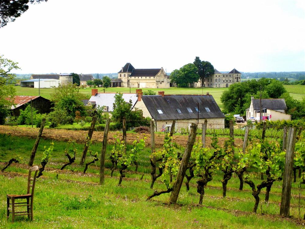 region-anjou-paysage