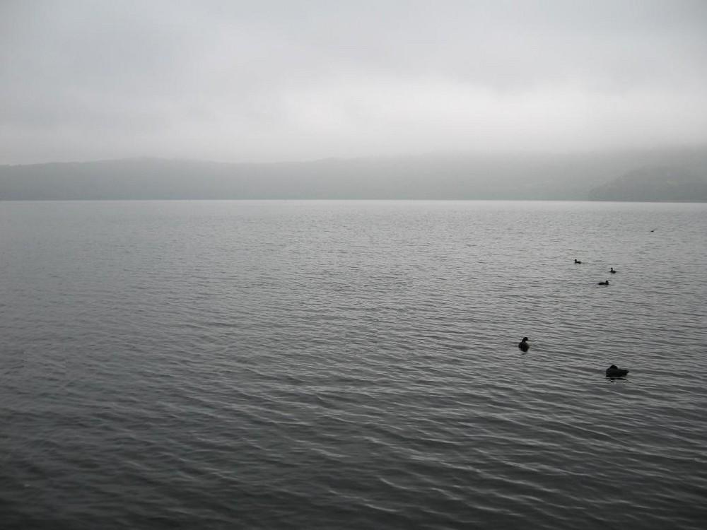 Laacher See im Herbstnebel
