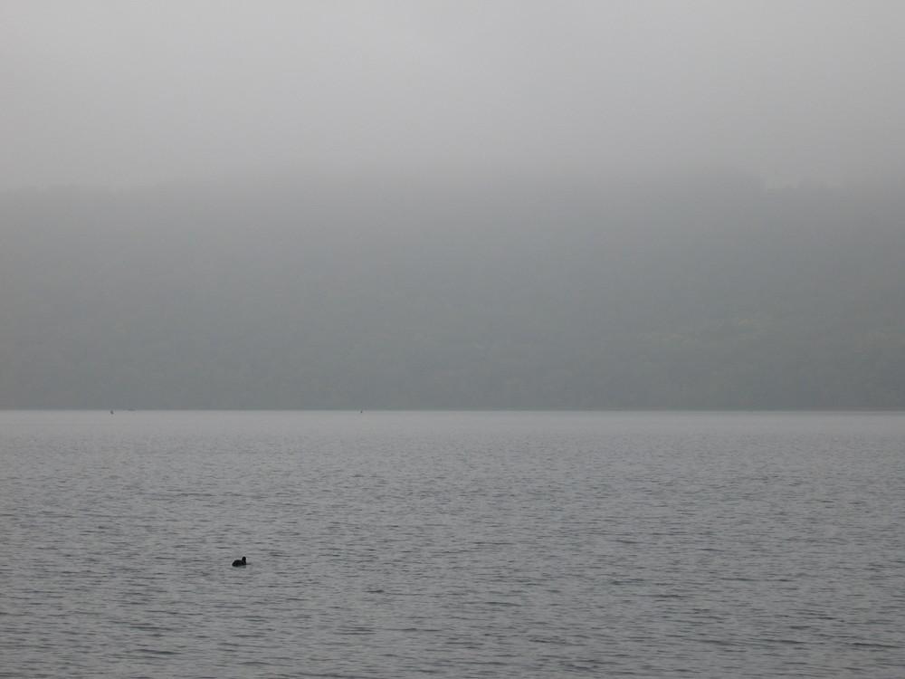 Laacher See im Herbstnebel gezoomt
