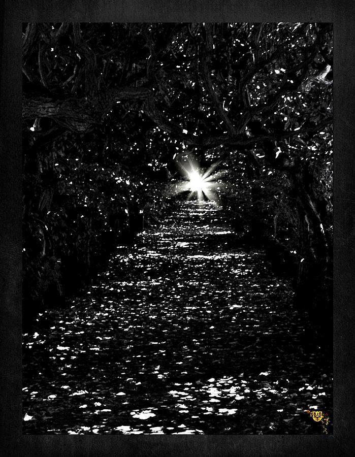Labyrinth und Hoffnung