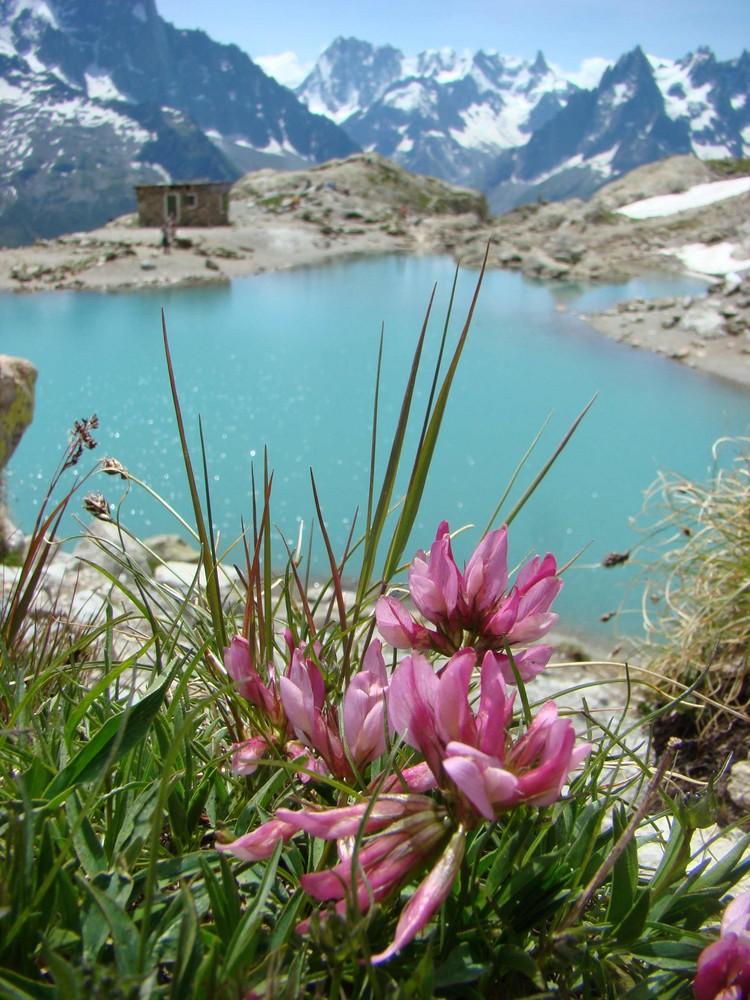 lac blanc.Chamonix