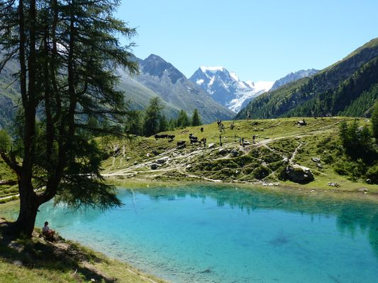Lac Bleu (Arolla - Valais)