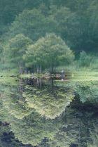 lac de bethmale ariège