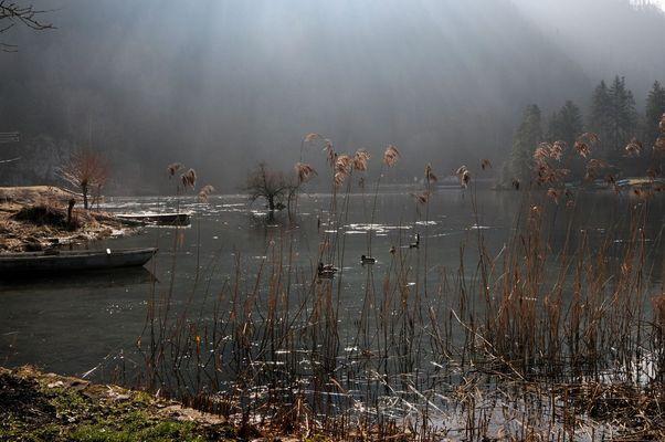 lac de Biofond (Suisse)