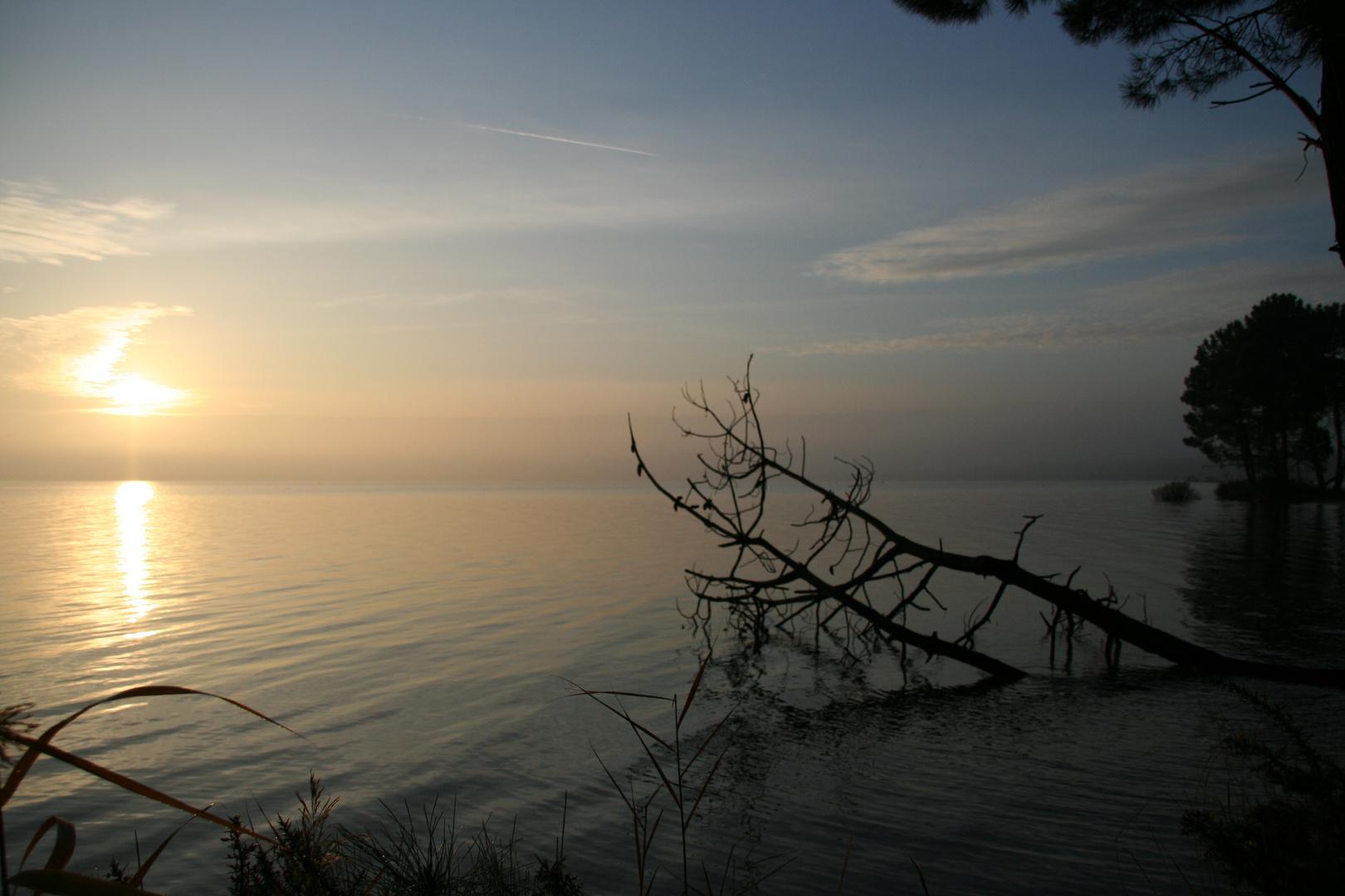 lac de maguide BISCAROSSE un 1er leve de soleil le 1 janvier 2009
