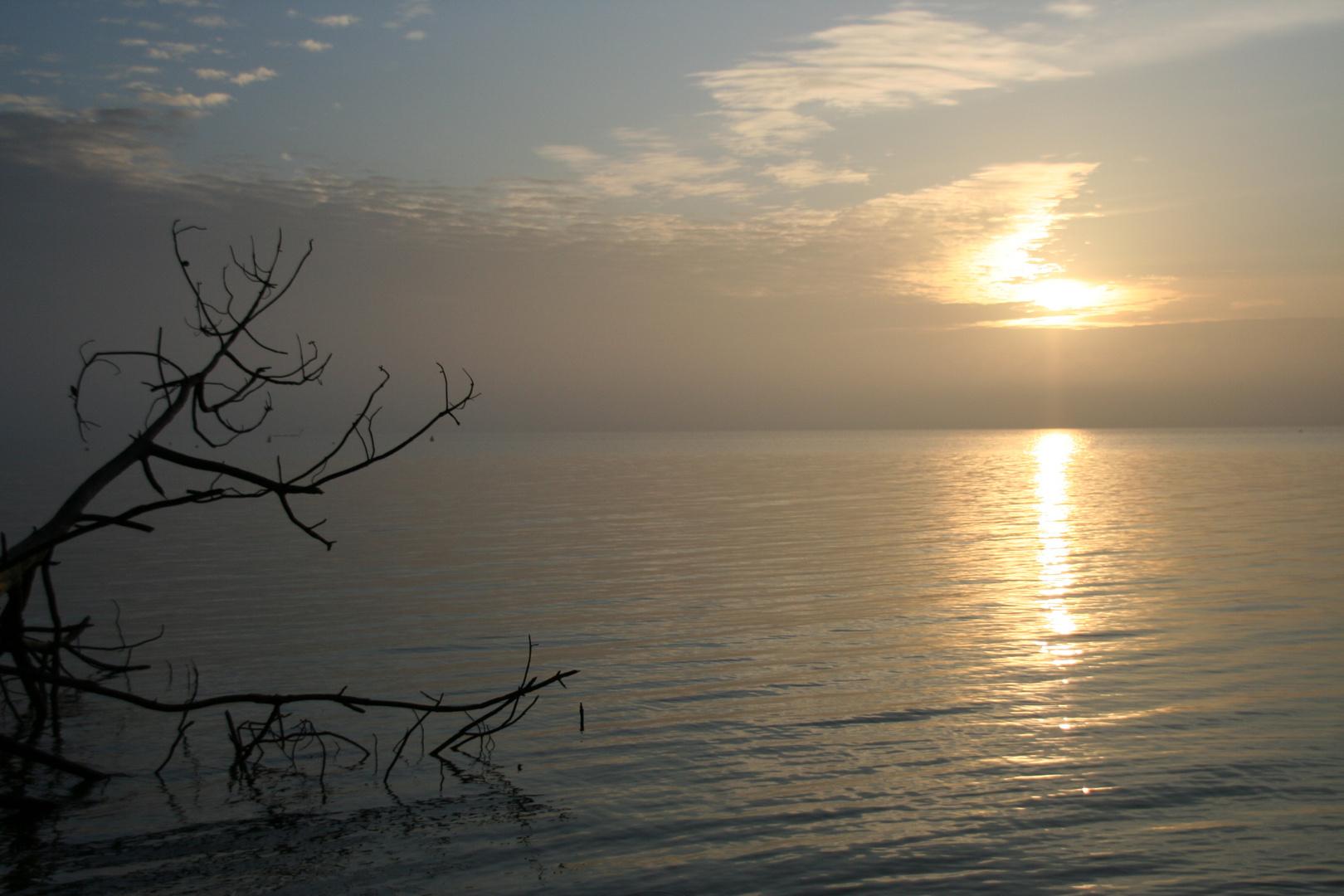 lac de maguide BISCAROSSE un 1er leve de soleil le 1 janvier 2009 n2