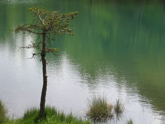 Lac de St. Apolinaire