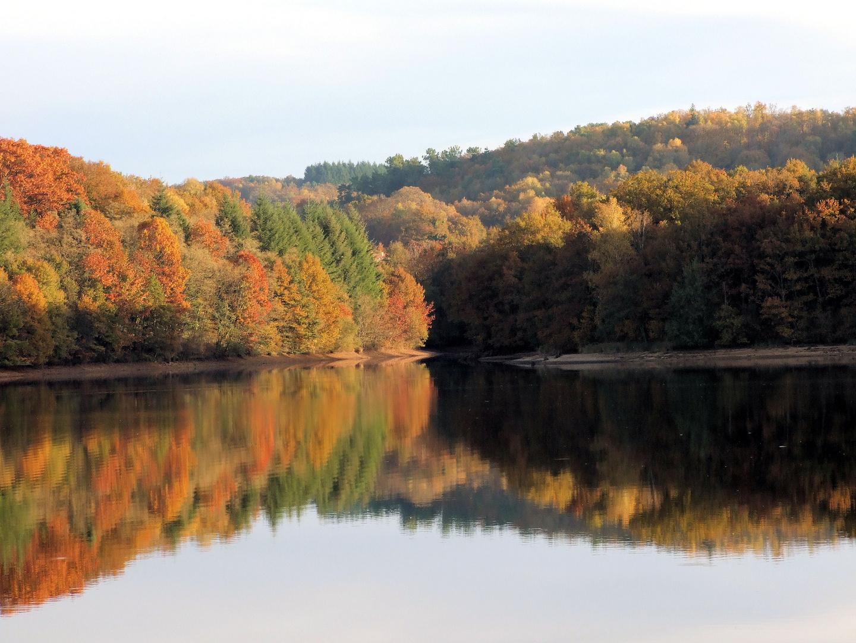 Lac de st pardoux(87)